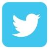 Twitter logo canva
